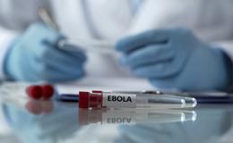 Image{width=null, height=null, url='https://blog.frankcrum.com/hubfs/FC_Resource_ebola.jpg'}
